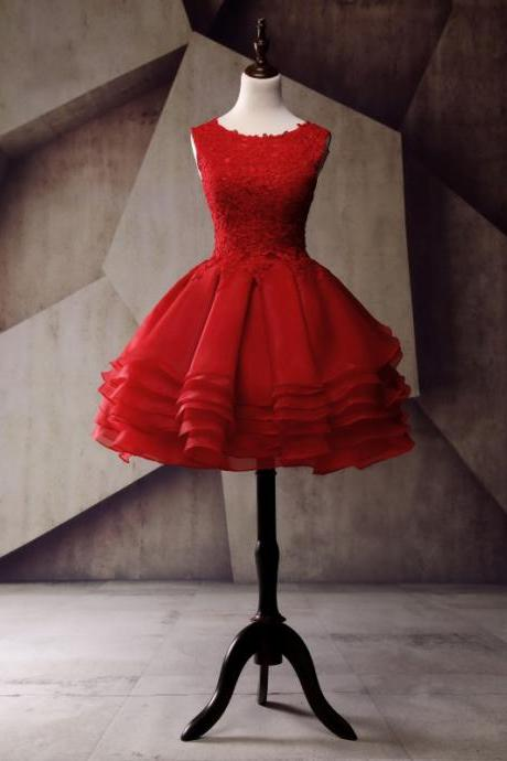 Red Organza Lace Homecoming Dress